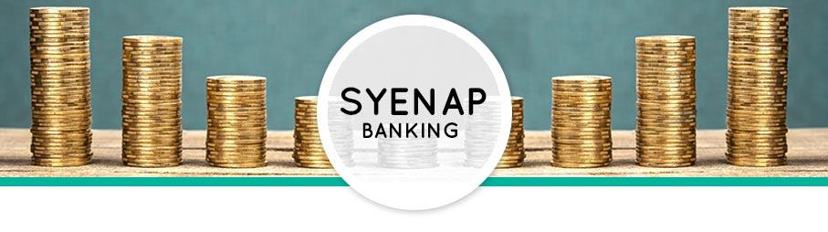 Syenap-Banking2