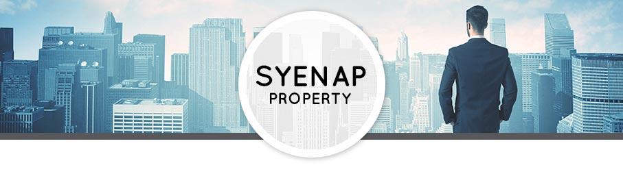 Syenap-Property2
